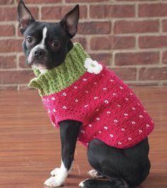 Strawberry Sweater Knitted Dog Sweater Pattern, Dog Coat Pattern, Knit Dog Sweater, Small Dog Clothes, Pet Clothes, Crochet Dog Clothes, Pet Coats, Pet Sweaters, Dog Jumpers