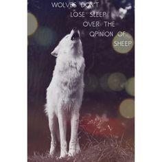 Wolf | quote | instagram.com/brittapri