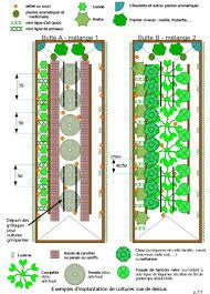 1000 images about permaculture on pinterest culture for Potager permaculture plan