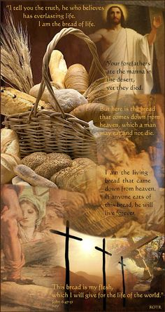Throughout this week the Mass readings from John's Gospel focus on Jesus as the bread of life. Scripture readings for today's Mass an. Justin Martyr, Everlasting Life, Lord And Savior, Son Of God, Bible Scriptures, Scripture Cards, Christian Inspiration, The Life, Jesus Christ