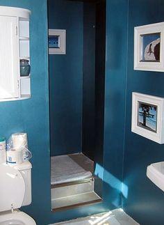 guest bathroom color