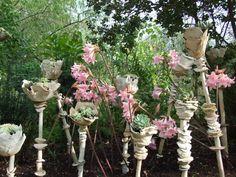http://www.forum-jardins.com/t5191-jardin-de-poterie-a-gattieres-dans-les-alpes-maritimes