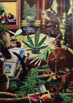 """brallanq: """" All Weed Everything! —>Enter Trippyville"""