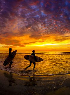 Sunset Surfing, Cardiff California