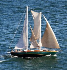 Sailing San Diego Bay taken from Pt Loma
