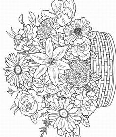 images of printerable adult coloring pages | Free printable coloring pages for adults pictures 3