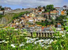 100 coisas fantásticas que só pode encontrar no Porto