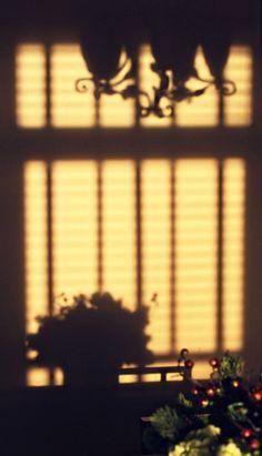#window #shadow