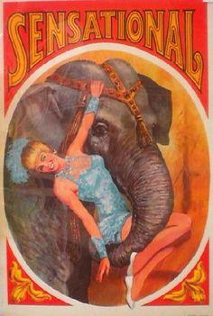 "Original 1960's poster for ""sensational"" circus."