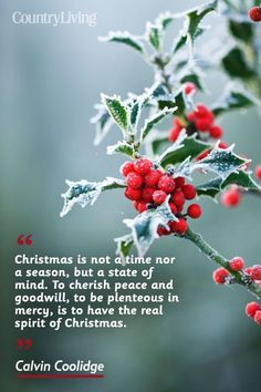 Share one of these best Christmas quotes and sayings that perfectly capture the festive spirit of the holiday season. Use one in a Christmas card or in your Christmas dinner prayer to spread love and joy this winter. Christmas Status, Holiday Quotes Christmas, Christmas Thoughts, Merry Christmas Wishes, Christmas Blessings, Christmas Love, Christmas Pictures, Christmas Greetings, Christmas Humor