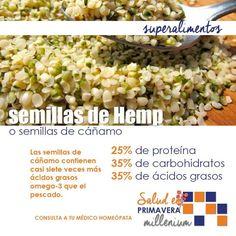 Conoces la semilla de Hemp? Aquí te recordamos algunos datos al respecto.