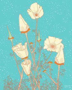 buyolympia.com: Jill Bliss - California Poppies