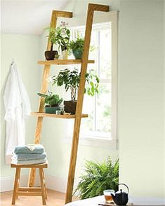 60 Best Plant Stand Ideas for Your Own Forest - Enjoy Your Time Window Plants, Hanging Plants, Hanging Wire, Best Indoor Plants, Cool Plants, Indoor Herbs, Shade Plants, Air Plants, Cactus Plants