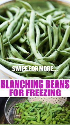 Freezing Fruit, Freezing Vegetables, Frozen Vegetables, Fruits And Veggies, Freezing Green Beans, Freeze Fresh Green Beans, Freezing Eggplant, Preserving Green Beans, Blanching Green Beans