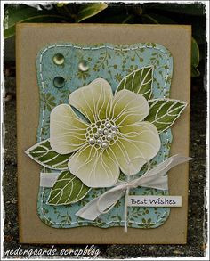 Love the white embossing and soft touch of color on the flower against the small print background.
