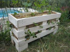 Des jardinières pour les fraises en récup de palettes - créations et bricolages d'Oli
