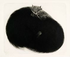 Ola Steen - Inntil All About Cats, Etchings, Fancy, Animals, Black, Art, Gatos, Kunst, Pictures