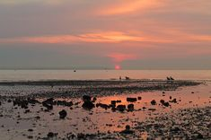 19 Delightful English Towns Everyone Should Visit Once Whitstable Beach, Whitstable Kent, Victoria Villa, Places To Travel, Places To See, Pretty Sky, Love At First Sight, Staycation, Day Trip