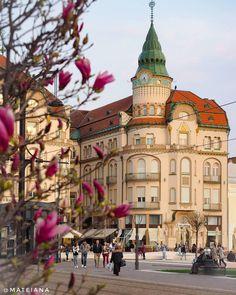 """We recommend a trip to: Oradea city Photo by Mateiana Art Deco, Art Nouveau, Vintage Architecture, My Town, Top Photo, European Travel, Home Builders, City Photo, Places To Visit"