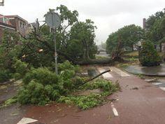 @NOS De ravage van de storm in Haarlem