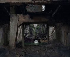images of nature suspended within abandoned sites by noemie goudal Photo Fair, Multiple Exposure, Paris Art, Grand Palais, Art Moderne, Nature Images, Photomontage, Art Fair, Pretty Pictures