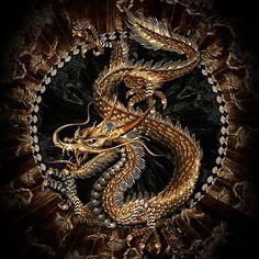 #Dragons Love It