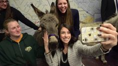 Welcome DNC Delegates and Donkeys! (Video by The Valley Forge Tourism & Convention Board)