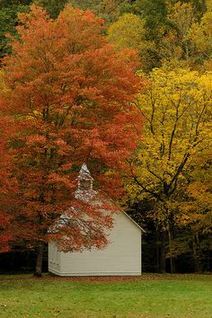Autumn Blessings by AppalachianPics, via Flickr