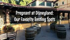 Pregnant at Disneyland and need a resting place? Check out our picks for your very own thoughtful spots where you can rest, relax, and recharge! Walt Disney World, Disneyland, Rest, Outdoor Decor, Disney Resorts