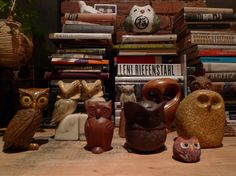 owls and books