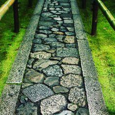 大徳寺高桐院  #京都 #大徳寺高桐院  #kyoto #daitokuji koutouin