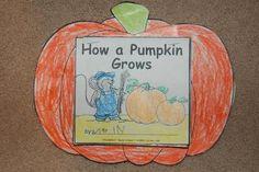 Pumpkin ideas and printables -