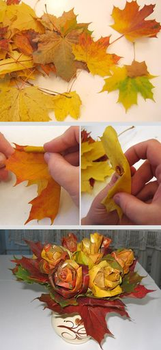 DIY maple leaf roses