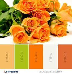 Color Palette Ideas from Flower Rose Yellow Image Colour Combinations, Color Schemes, Soothing Paint Colors, Orange Color Palettes, Rose Family, Color Codes, Color Pallets, Mood Boards, Color Inspiration