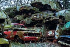 This story is about forgotten car graveyard that is full of classic cars.  It doesn't matter how hard people try to create something, nature always finds a way to take it all back. Everything is temporary.  It is truly breathtaking to watch this unstoppable force at work.   Thank you for your subscribe on YouTube, it means a lot! :) Everything Is Temporary, Cars Youtube, Abandoned Cars, End Of The World, Classic Cars, Monster Trucks, Watch, Create, Nature