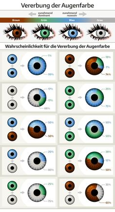 Pretty Eyes, Beautiful Eyes, Beautiful Pictures, Eye Color Chart Genetics, Baby Eye Color Chart, Eye Facts, Eye Color Facts, Gray Eyes, The More You Know