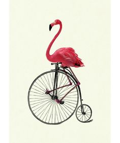 Pink Flamingo riding Bike Victorian Steampunk art print. $19.00, via Etsy.