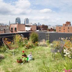 """nature // street vision: for rooftop gardens to be the norm in modern urban living  +  =  #naturestreet #vision #blog #fresh #urban #street…"""