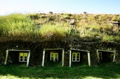 """""""Laufas turf houses"""" in Iceland..."""