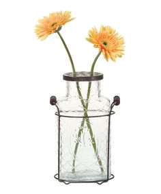 *need to drill holes in a mason jar lid to achieve this affect* Look what I found on #zulily! Glass & Metal Vase by Creative Co-Op #zulilyfinds