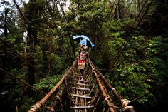Explore the rainforests of PNG   Community Post: One Million Reasons Why Papua New Guinea Should Be On Your Bucket List