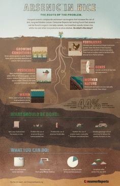 Food infographic  This is a superb article that outlines why there are alarmingly high levels of a