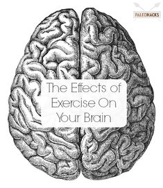 modafinil sharp your focus improve concentration and unlock hidden potential of your brain strong body smart brain book 3