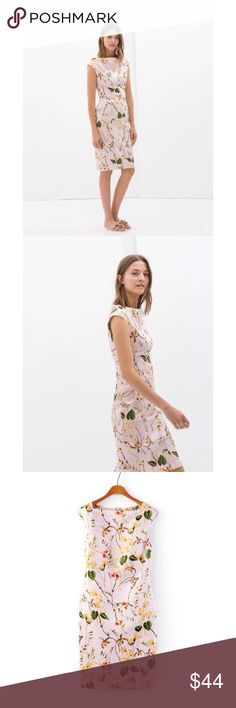 """Pastel Spring Floral Shift Dress Business Blogger NWT. Pastel Pink. 100% polyblend. Pastel pink floral silk shift pencil dress. Zippered back. Thick and quality material. Boat neck line.  S (bust 30""""waist 27""""hips 35""""shoulder 15""""). M (bust 31.5""""waist 28""""hips 37""""shoulder 16""""). L (bust 33""""waist 29""""hips 39""""shoulder 17""""). Tip: I am 5'7'' and weigh 125-130 lbs. I like my dress not too tight or too loose, shirts longer than shorter, jackets for layering, and sweaters oversized. For this, I wear…"""