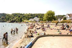 – Vi vet at to av ti er redde og bekymret når de eller sin familie er på stranden i Vestfold, skriver president Claire Alfonso i Norges Livredningselskap i en pressemelding.