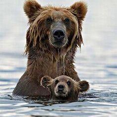 Did you say dinner? #instafollow #animal #cute
