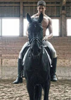 The most important role of equestrian clothing is for security Although horses can be trained they can be unforeseeable when provoked. Riders are susceptible while riding and handling horses, espec… Male Horse, Man On Horse, Cute Country Boys, Country Men, British Country, Hot Cops, Hot Cowboys, Real Cowboys, Farm Boys