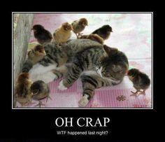 One too many!! LOL