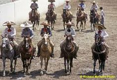 charreadas in mexico - Google Search