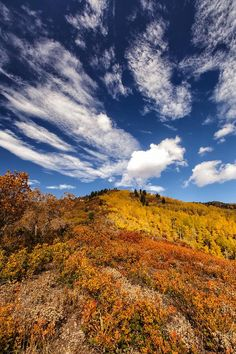 ✯ Color on the Mountains of Utah
